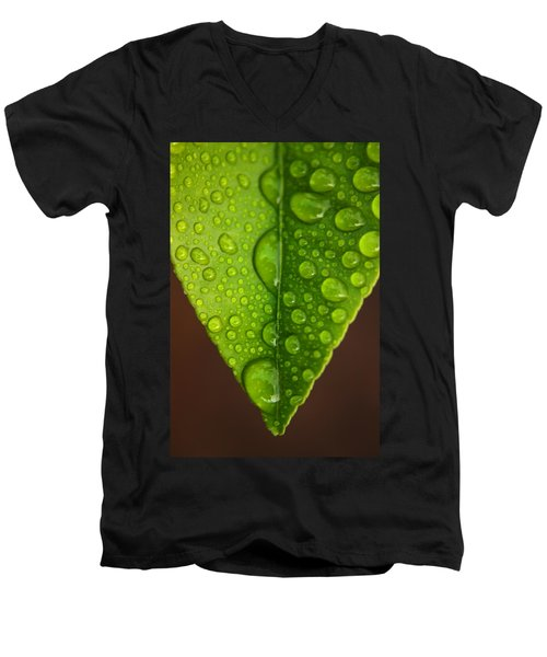 Water Droplets On Lemon Leaf Men's V-Neck T-Shirt by Ralph A  Ledergerber-Photography