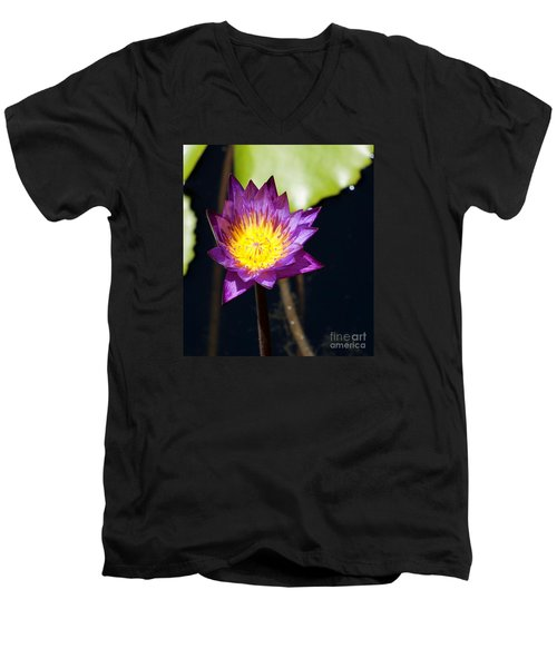 Water Lily 15 Men's V-Neck T-Shirt