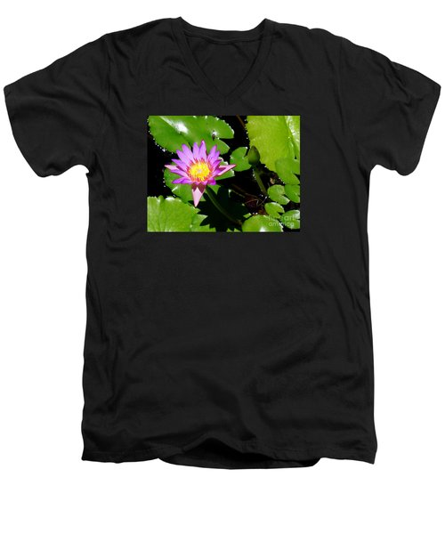 Water Lily 9 Men's V-Neck T-Shirt