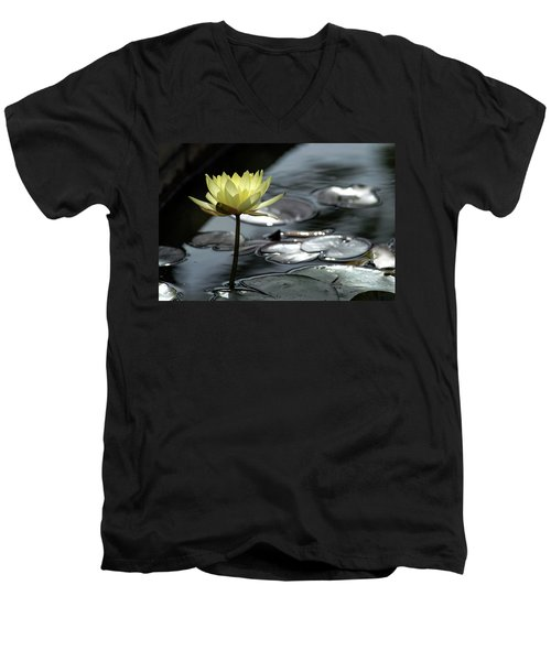 Water Lily And Silver Leaves Men's V-Neck T-Shirt