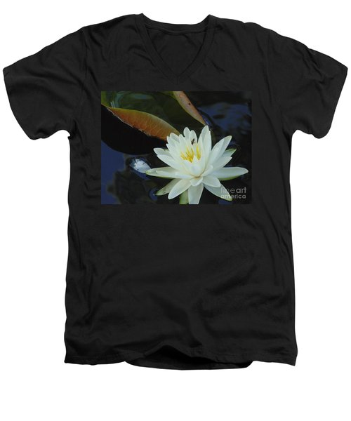 Water Lily Men's V-Neck T-Shirt by Daun Soden-Greene