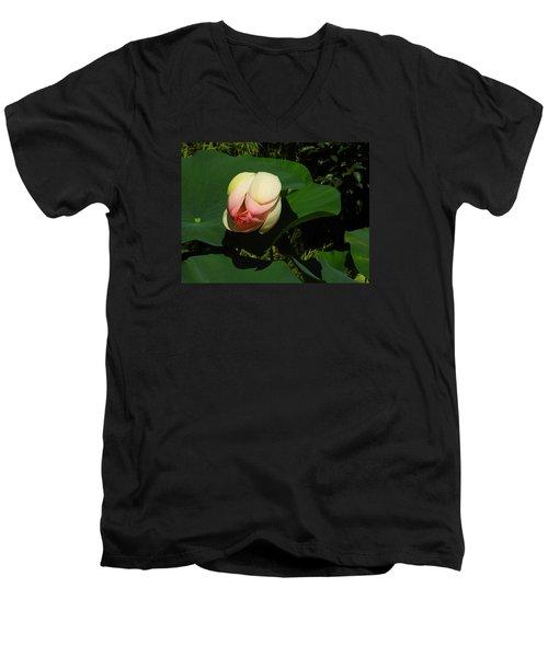 Water Lily Men's V-Neck T-Shirt by Ernst Dittmar
