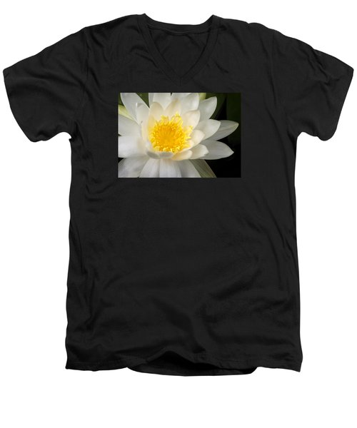 Water Lily II Men's V-Neck T-Shirt