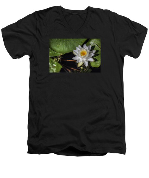 Water Lily Men's V-Neck T-Shirt by Steve Gravano