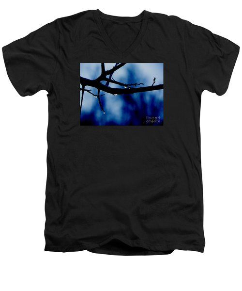 Water On Branch Men's V-Neck T-Shirt by Craig Walters