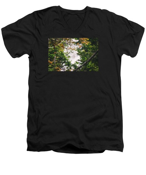 Men's V-Neck T-Shirt featuring the photograph Waterfall Calling My Name by Janie Johnson