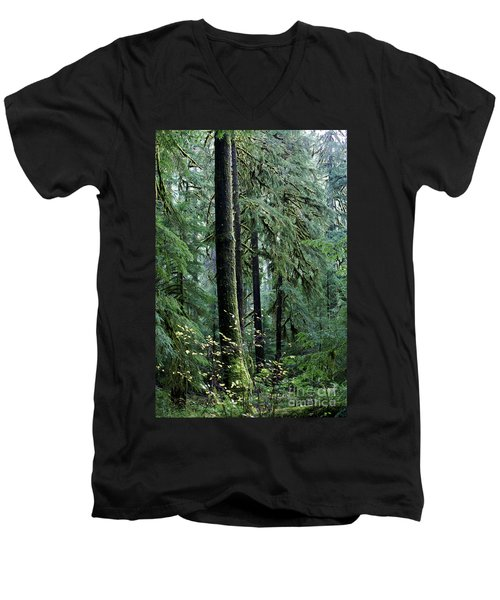 Welcome To The Woods Men's V-Neck T-Shirt