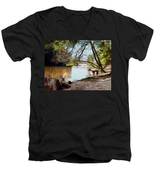 Welsh Springer Spaniel By The River Men's V-Neck T-Shirt