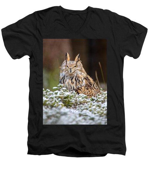 Western Siberian Owl Men's V-Neck T-Shirt