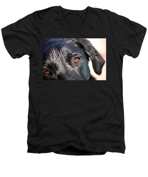 Wet Black Lab Men's V-Neck T-Shirt