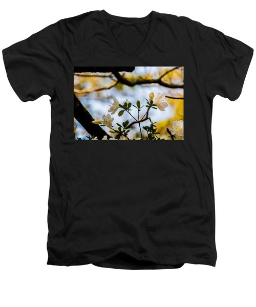 Whie Azaleas Under A Dogwood Tree Men's V-Neck T-Shirt by John Harding