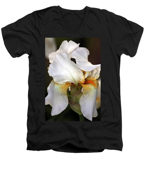 Men's V-Neck T-Shirt featuring the photograph White Bearded Iris by Sheila Brown
