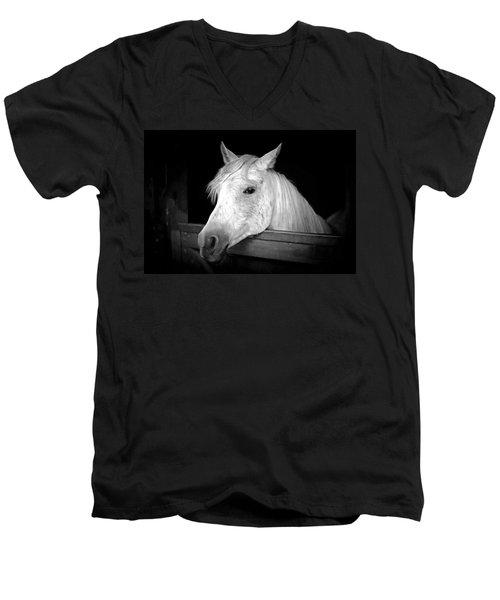 White Beauty Men's V-Neck T-Shirt by Marion Johnson