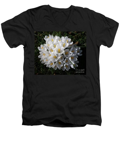 White Crocuses Men's V-Neck T-Shirt