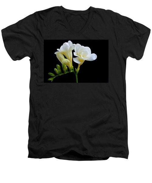 White Freesia Men's V-Neck T-Shirt by Terence Davis