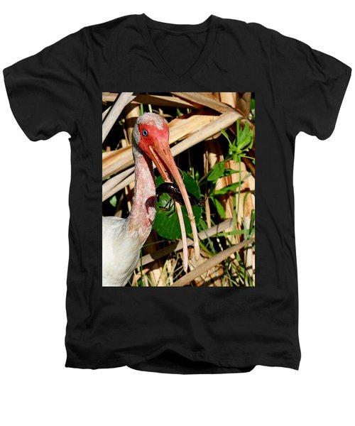 White Ibis Eating Crayfish Men's V-Neck T-Shirt