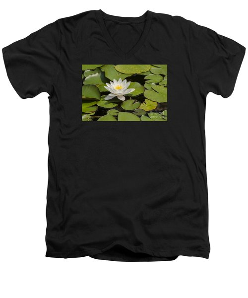 Men's V-Neck T-Shirt featuring the photograph White Lotus Flower by JT Lewis