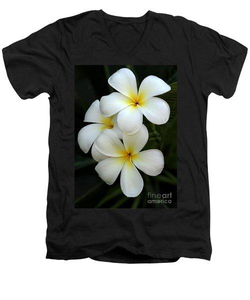 White Plumeria Men's V-Neck T-Shirt