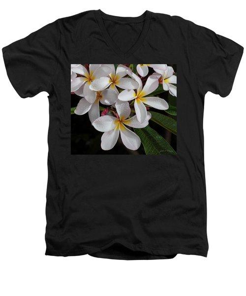 White/yellow Plumerias In Bloom Men's V-Neck T-Shirt