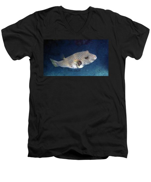 Whitespotted Pufferfish Closeup Men's V-Neck T-Shirt