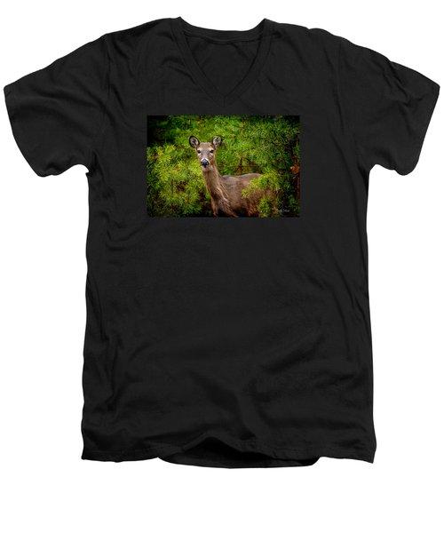 Whitetail In The Pines Men's V-Neck T-Shirt