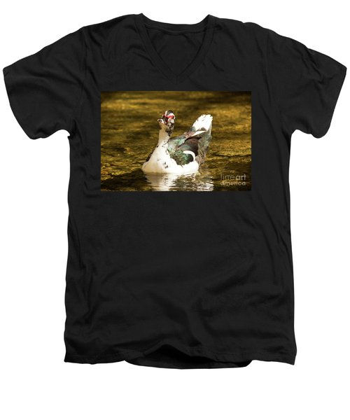 Who Me Wildlife Art By Kaylyn Franks Men's V-Neck T-Shirt