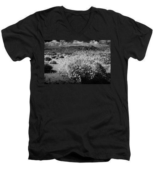 Men's V-Neck T-Shirt featuring the photograph Wild Desert Flowers Blooming In Black And White In The Anza-borrego Desert State Park by Randall Nyhof
