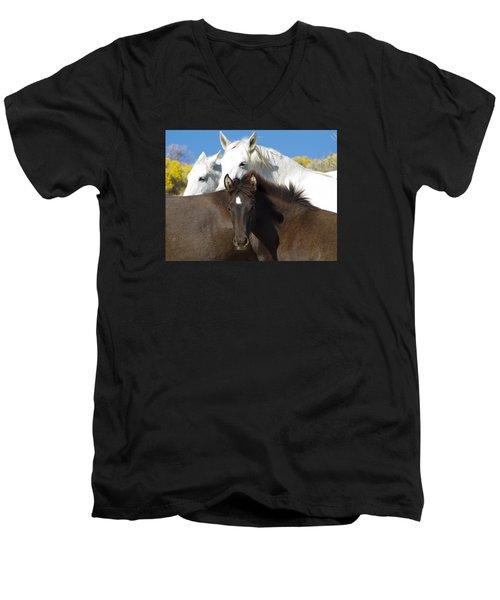 Wild Mustang Herd Men's V-Neck T-Shirt