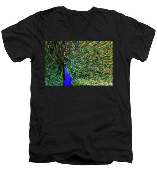 Wild Peacock Men's V-Neck T-Shirt
