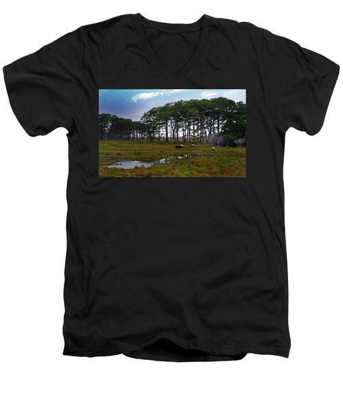 Wild Ponies Of Assateague Men's V-Neck T-Shirt