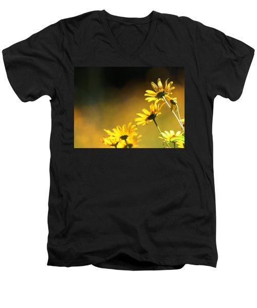 Wild Sunflowers Stony Brook New York Men's V-Neck T-Shirt by Bob Savage