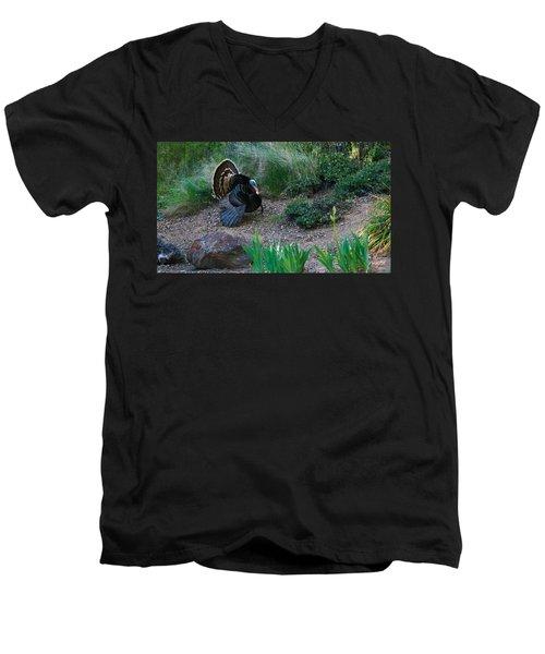 Wild Turkey Men's V-Neck T-Shirt by Mark Barclay