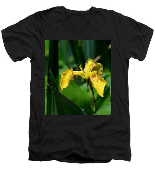 Wild Yellow Iris Men's V-Neck T-Shirt by Kathy Eickenberg