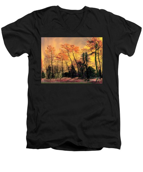 Men's V-Neck T-Shirt featuring the photograph Windy  by Elfriede Fulda
