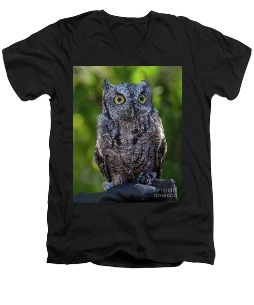 Winston Wildlife Art By Kaylyn Franks Men's V-Neck T-Shirt