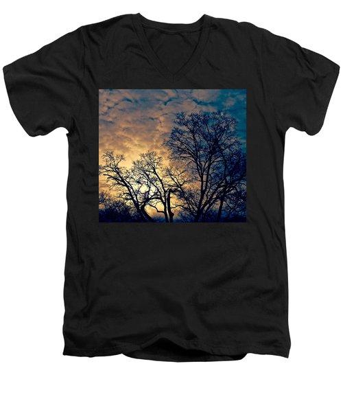 Winter's Afternoon Men's V-Neck T-Shirt by Rita Mueller