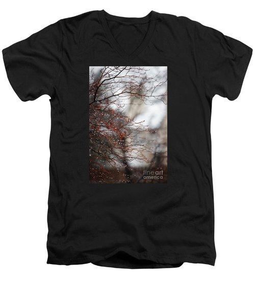 Wintry Mix Men's V-Neck T-Shirt
