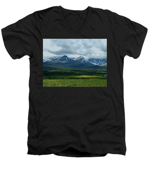 Wishing For Spring Men's V-Neck T-Shirt