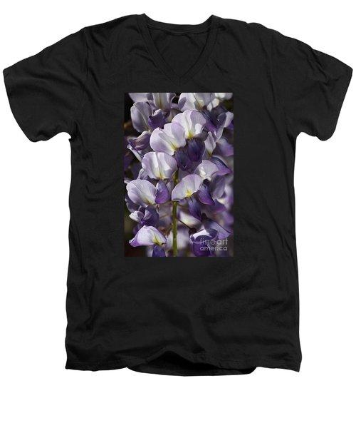 Wisteria In Spring Men's V-Neck T-Shirt