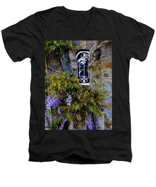 Wisteria Window Men's V-Neck T-Shirt