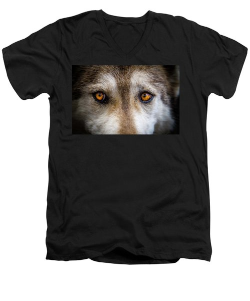 Men's V-Neck T-Shirt featuring the photograph Wolf Eyes by Teri Virbickis