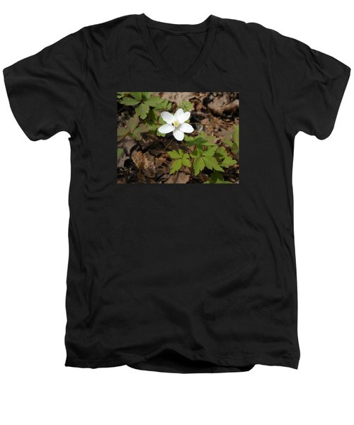 Men's V-Neck T-Shirt featuring the photograph Wood Anemone by Linda Geiger
