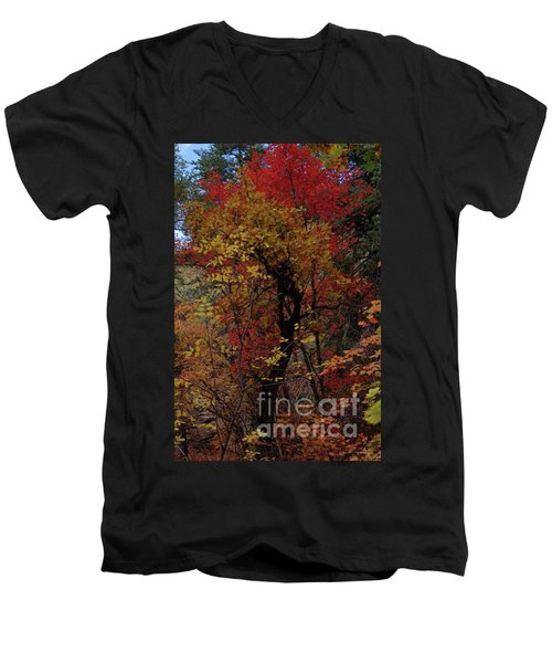Woods In Oak Creek Canyon, Arizona Men's V-Neck T-Shirt