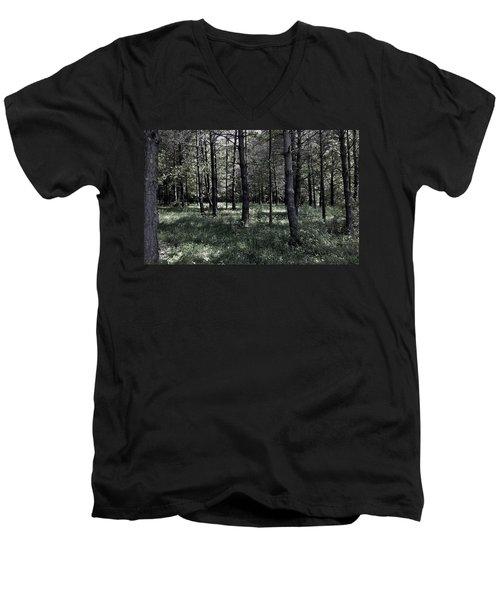 Woods Walk Men's V-Neck T-Shirt
