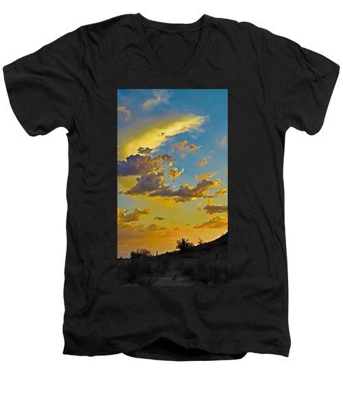 Y Cactus Sunset 10 Men's V-Neck T-Shirt