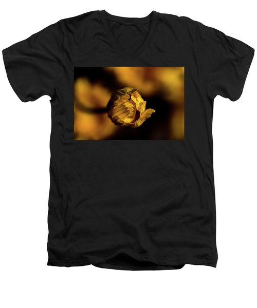 Yelllow Men's V-Neck T-Shirt by Jay Stockhaus