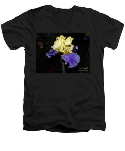 Yellow And Blue Iris Men's V-Neck T-Shirt by Kathy McClure