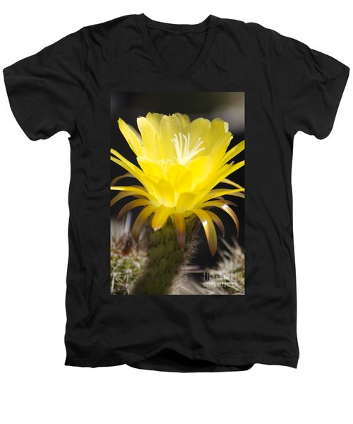 Yellow Cactus Flower Men's V-Neck T-Shirt