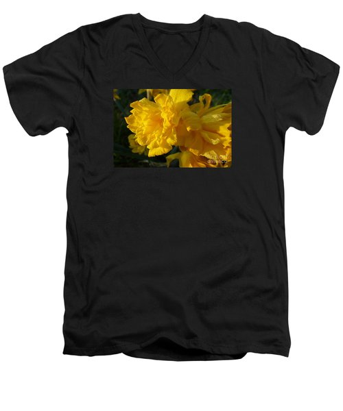 Yellow Daffodils Men's V-Neck T-Shirt by Jean Bernard Roussilhe