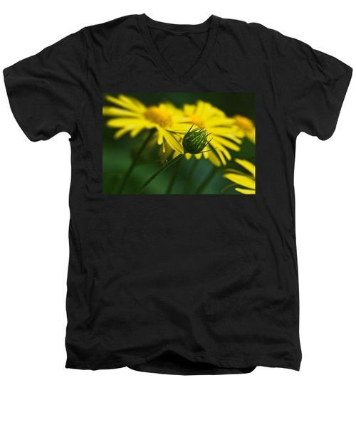 Yellow Daisy Bud Men's V-Neck T-Shirt